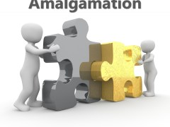 What is Amalgamation? Types of Amalgamation