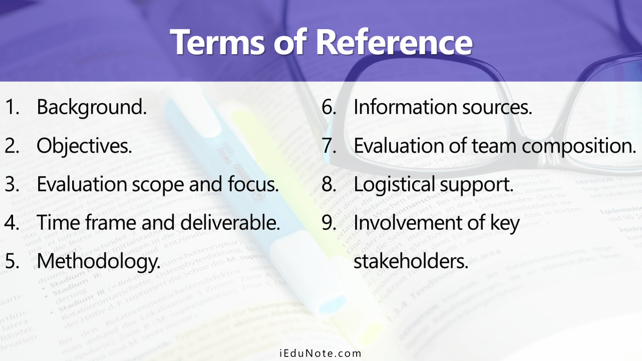 Terms of Reference (TOR)