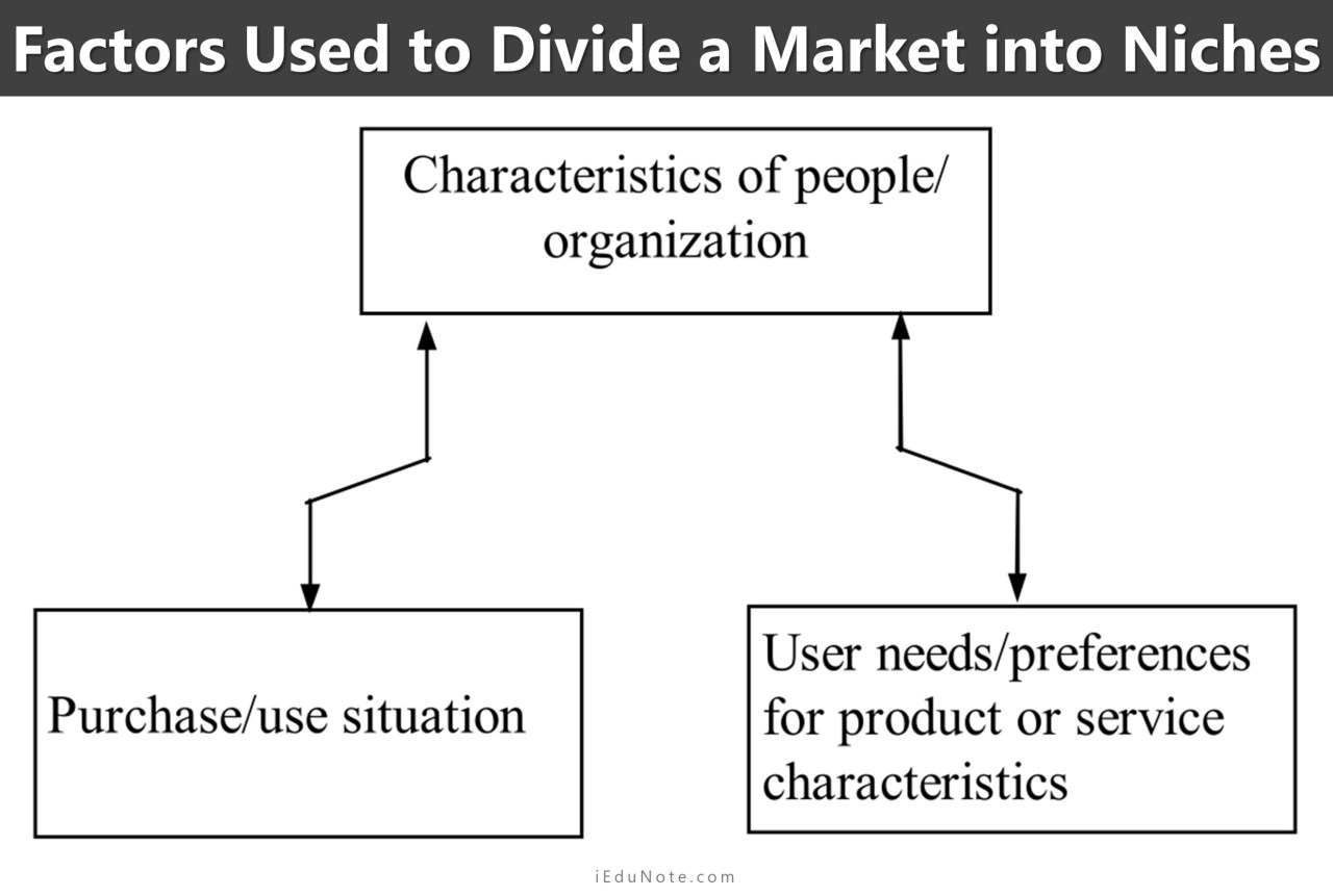 factors used to divide a market into niches