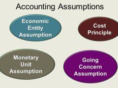 4 Accounting Assumptions