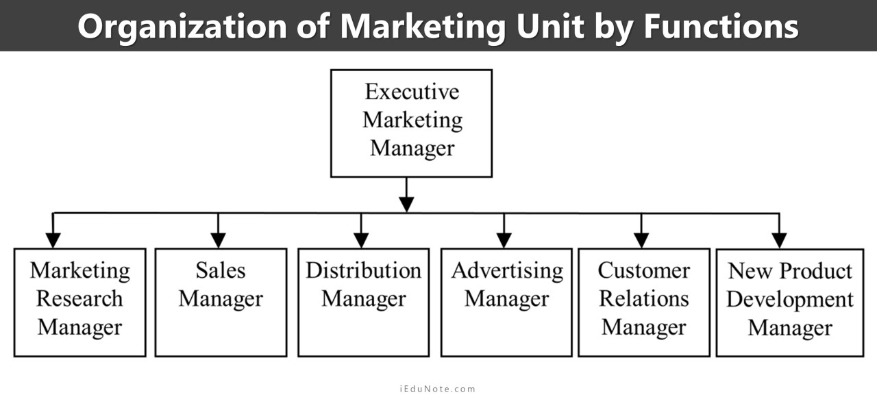 organization of marketing unit by functions