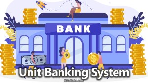Unit Banking: Meaning, Functions, Advantages, Disadvantages