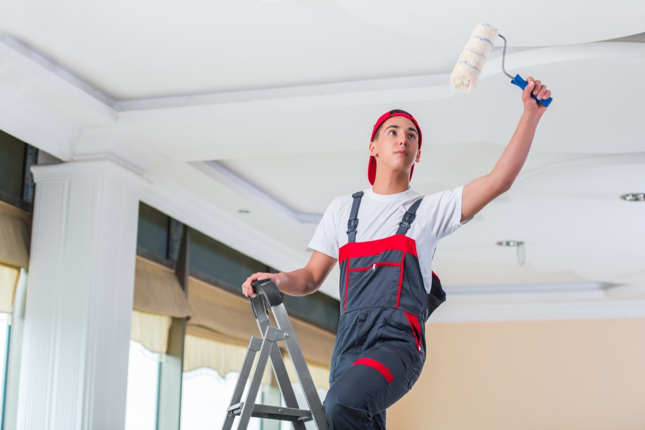 Why Should You Hire an Educated Painter?
