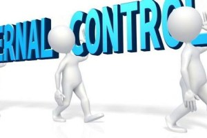 Internal Control System: 5 Components of Internal Control System