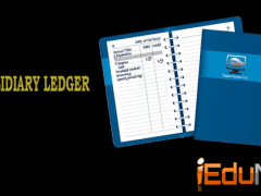 Subsidiary Ledger: Meaning, Types of Subsidiary Ledgers
