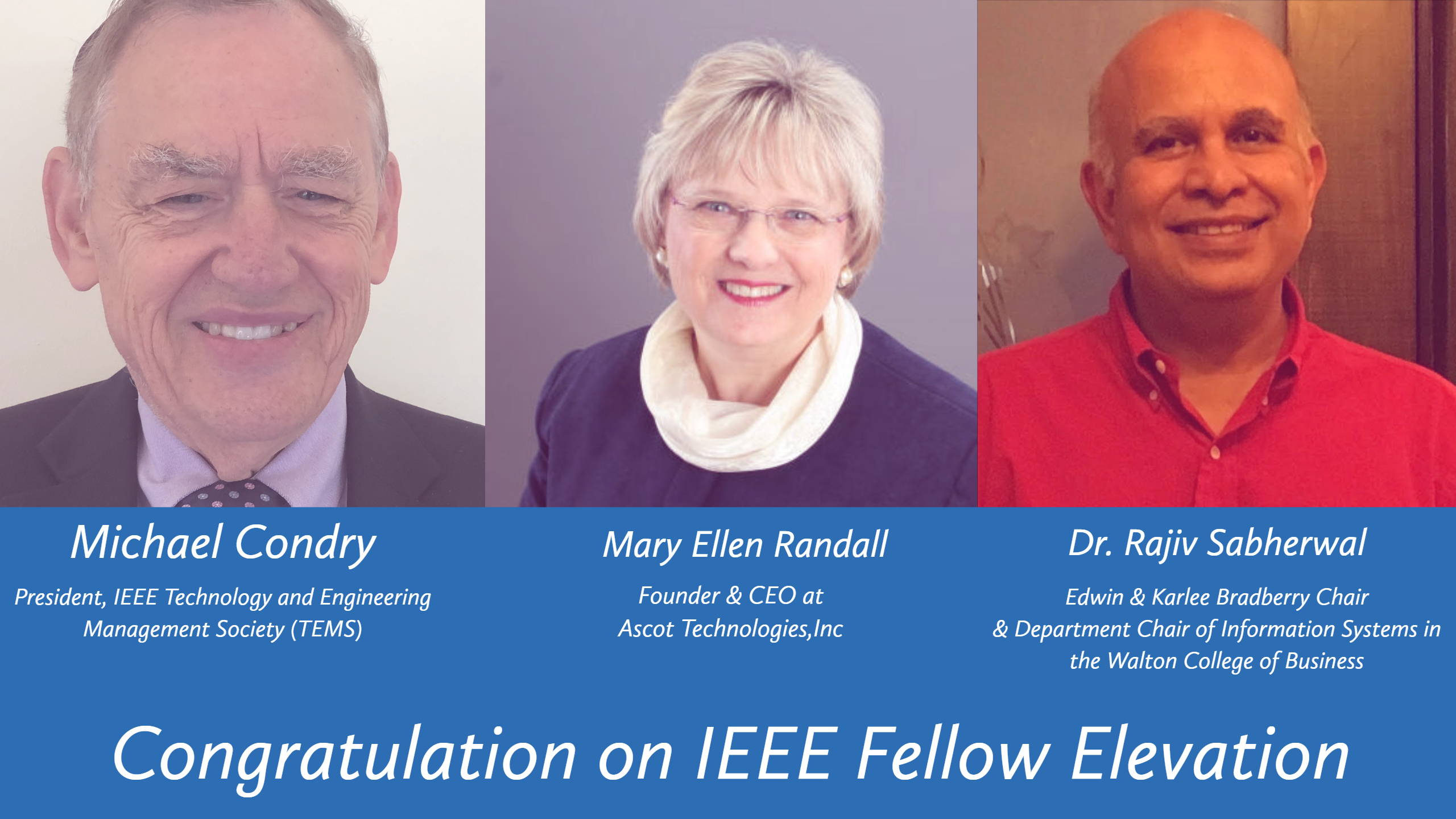 2019 IEEE Fellows for TEM - IEEE Technology and Engineering