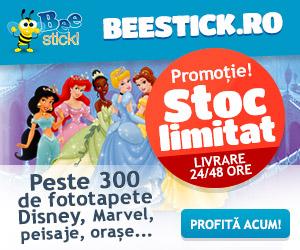 beestick300x250_77315_1422601998