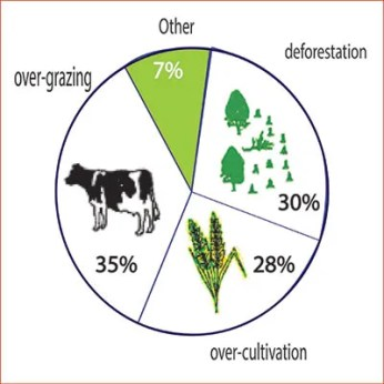 Causes of worldwide land degradation