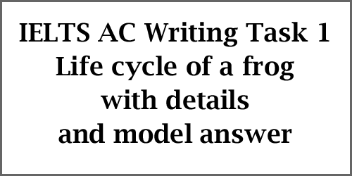 IELTS AC Writing Task 1: diagram, life cycle of a frog