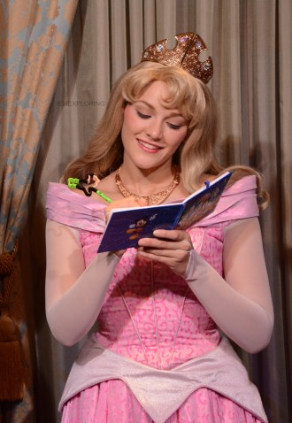 ultimate guide to packing for Disney