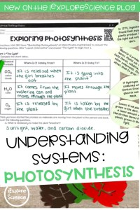 Using Photosynthesis To Understand Systems: Exploring Processes, Inputs, and Outputs