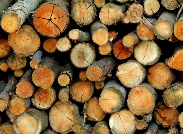 wood-415292_640