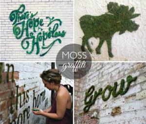 MossGraffiti - disegnare con il muschio