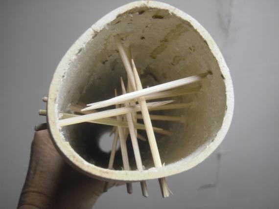 bastone della pioggia con lagenartia longissima