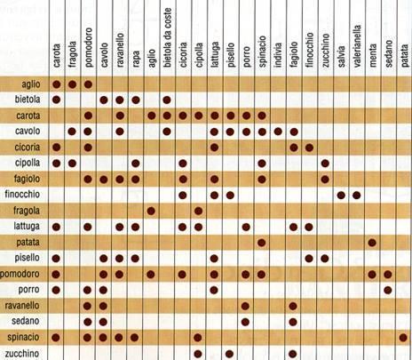 Tabella delle consociazioni vegetali