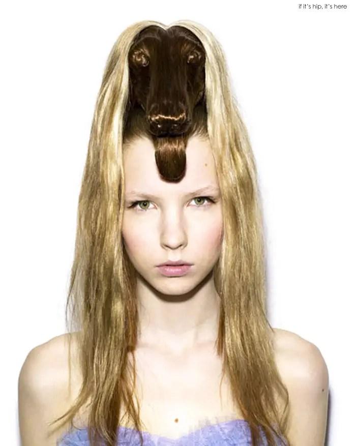 animal wig afghan dog IIHIH 12