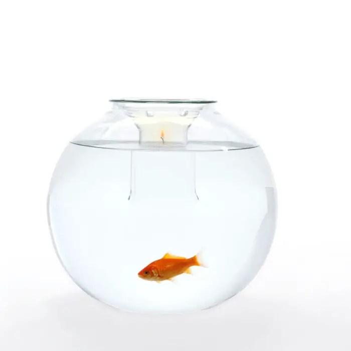19fishbowl-under candle light