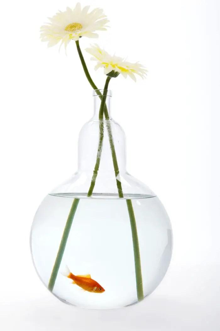 25fishbowl-bottle vase