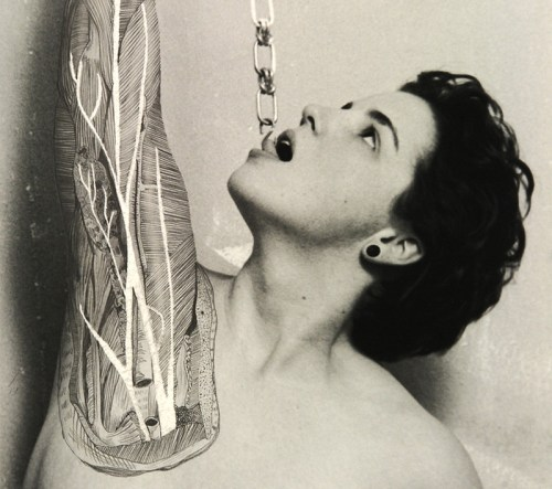 Read more about the article Dissections by Angela Christine Smith Combine Photography, Ink and A Sense of Self.
