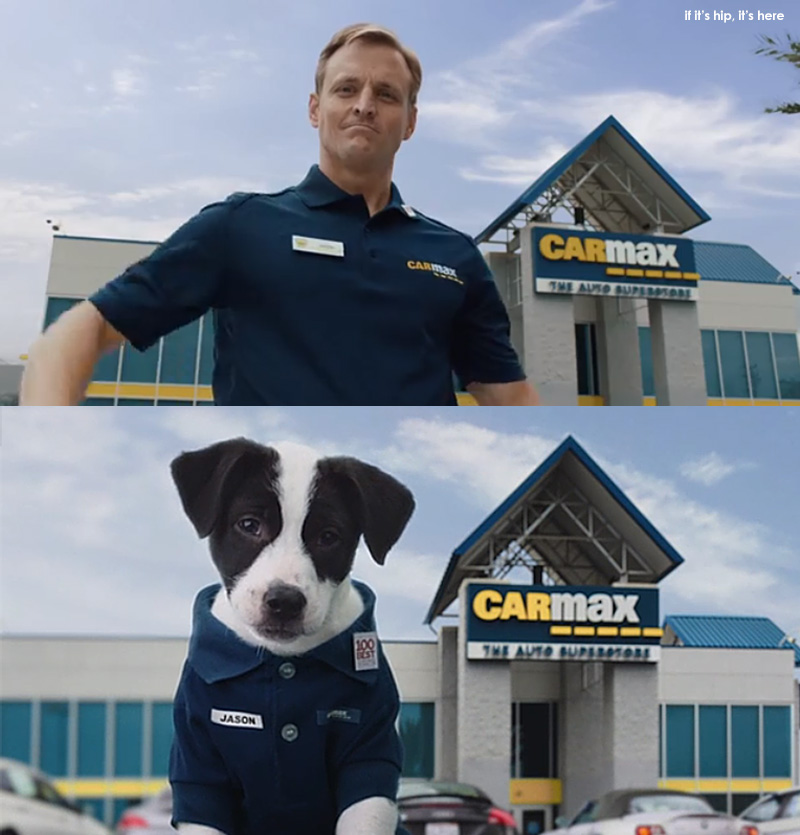 """Car Max Superbowl  """"Slow Clap"""" with puppies"""
