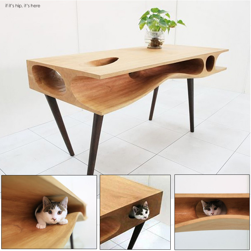 CAT TABLE hero IIHIH