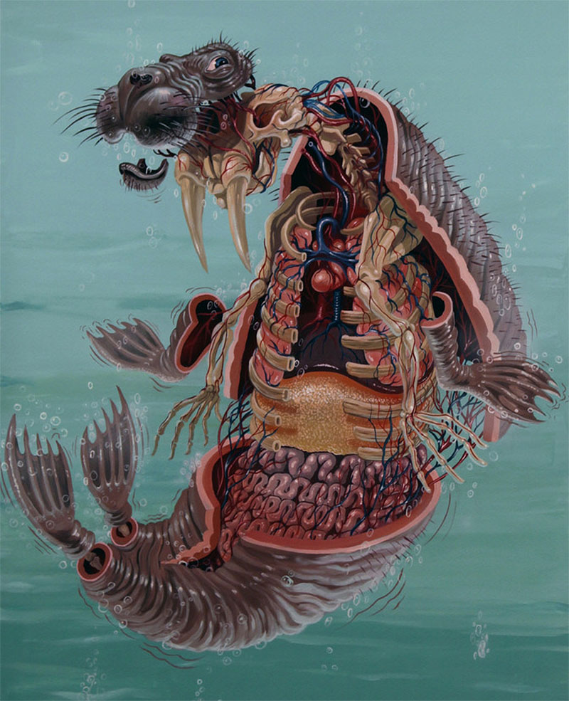 Street Artist Nychos on if it's hip, it's here