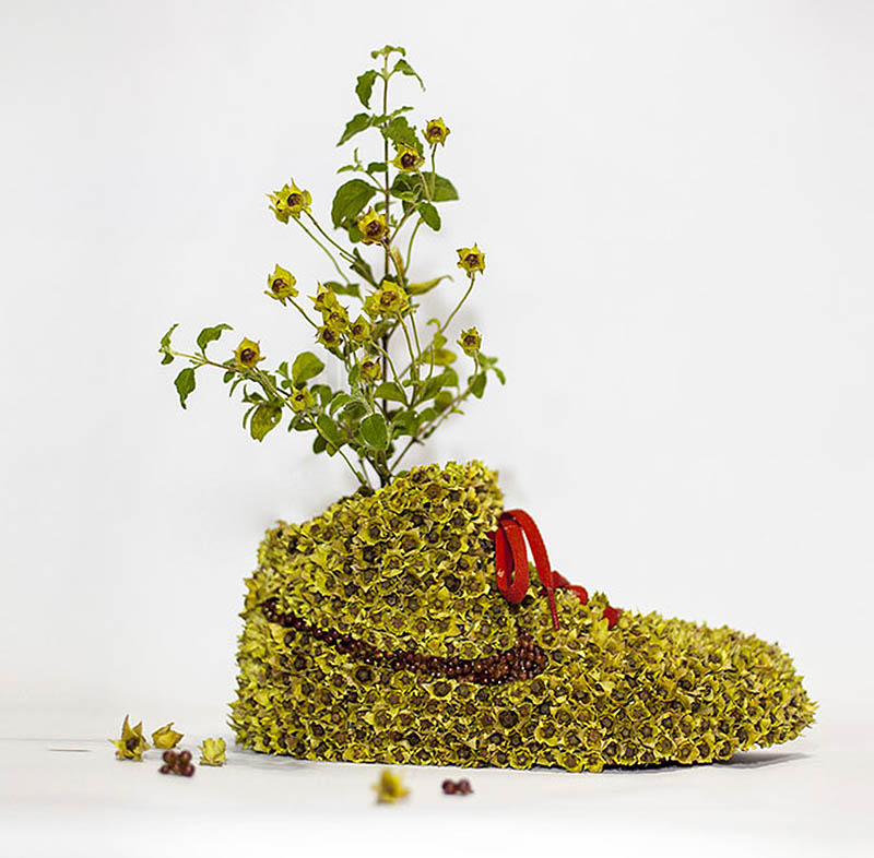 Just Grow It Nikes Transformed Into Nature by Mr Plant