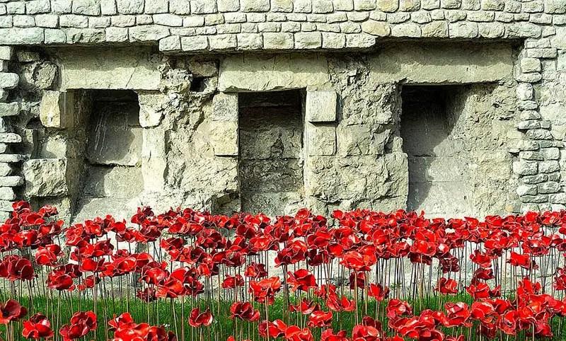 ceramic poppies tower of londojn