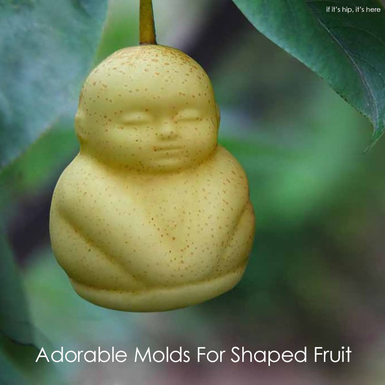 molds for shaped fruit IIHIH