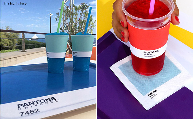 Pantone cups and trays