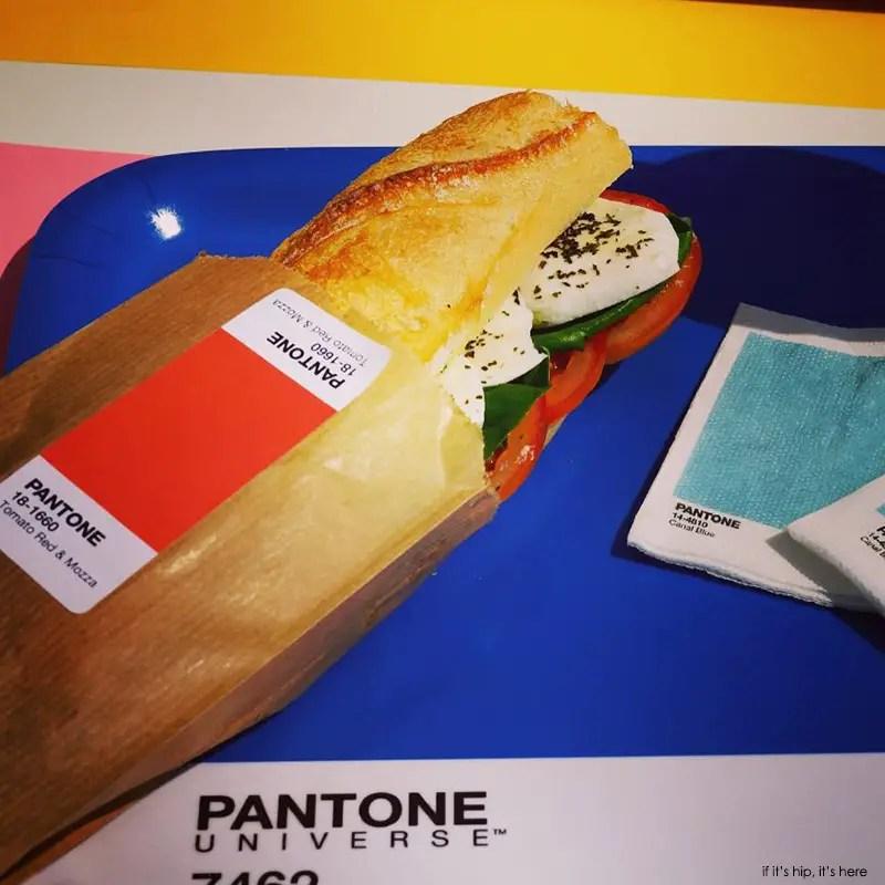 Pantone cafe sandwich on tray