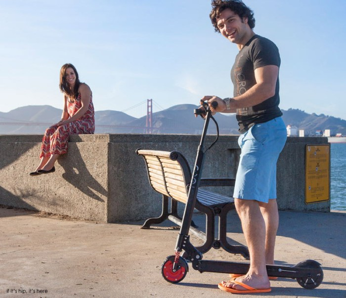 ecoreco scooter10 IIHIH