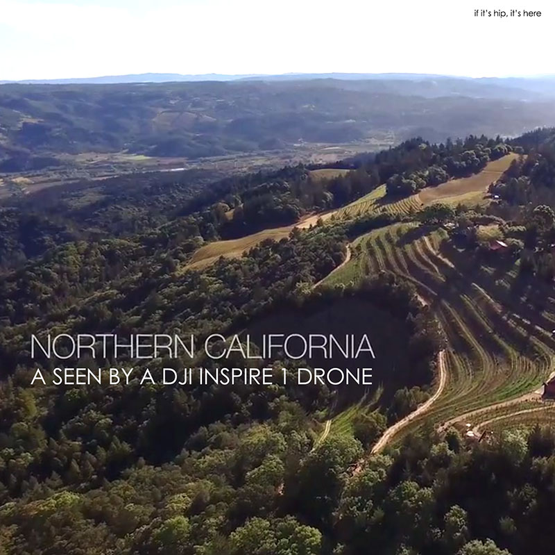 Napa valley and San francisco from above