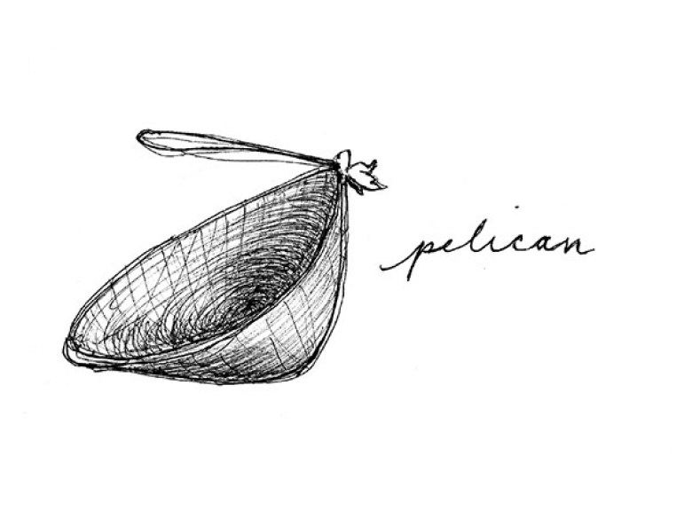 pelican chair sketch