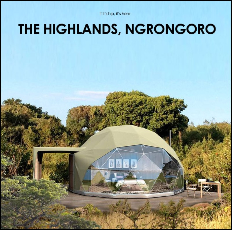 Highlands Ranch Backcountry Wilderness Area: Wildlife And Wild Tents: The Highlands Ngorongoro.