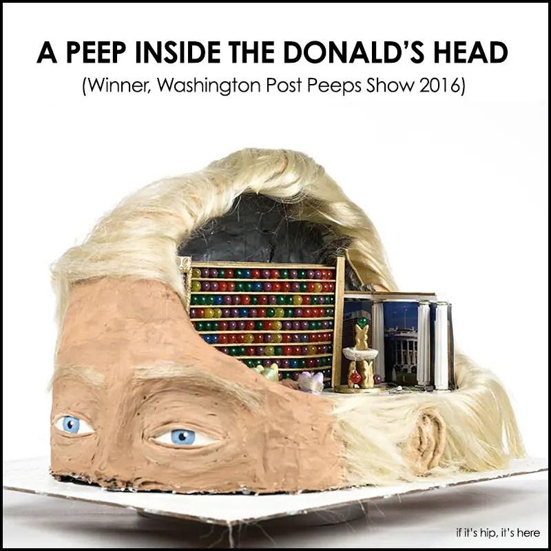 a peep inside the donald's head hero