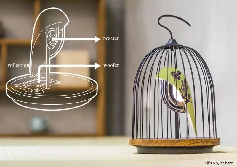 jingoo lamp and speaker with diagram