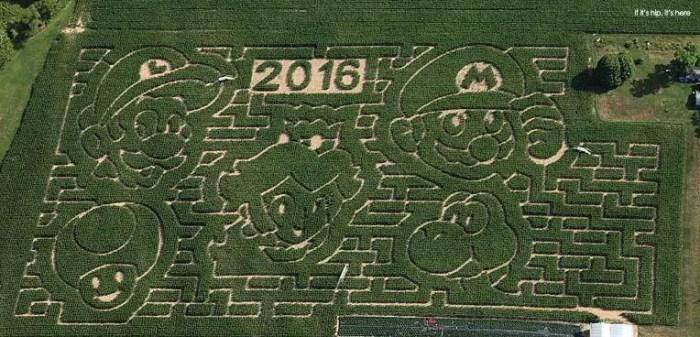 2016- Mario Bros maize