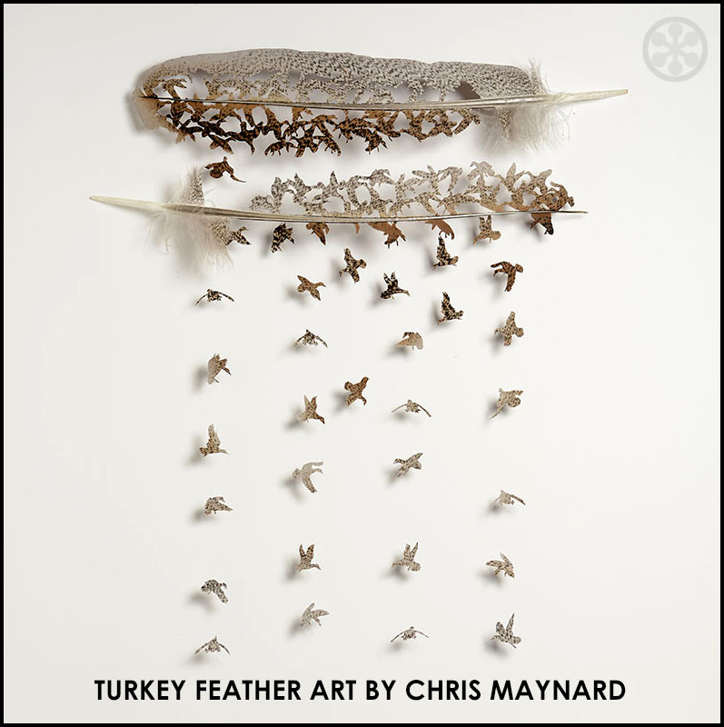 chris-maynard-turkey-feather-art-if-its-hip-its-here