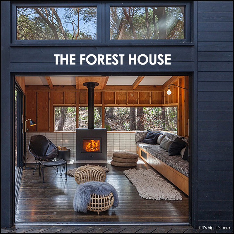 The Forest House by Envelope AD