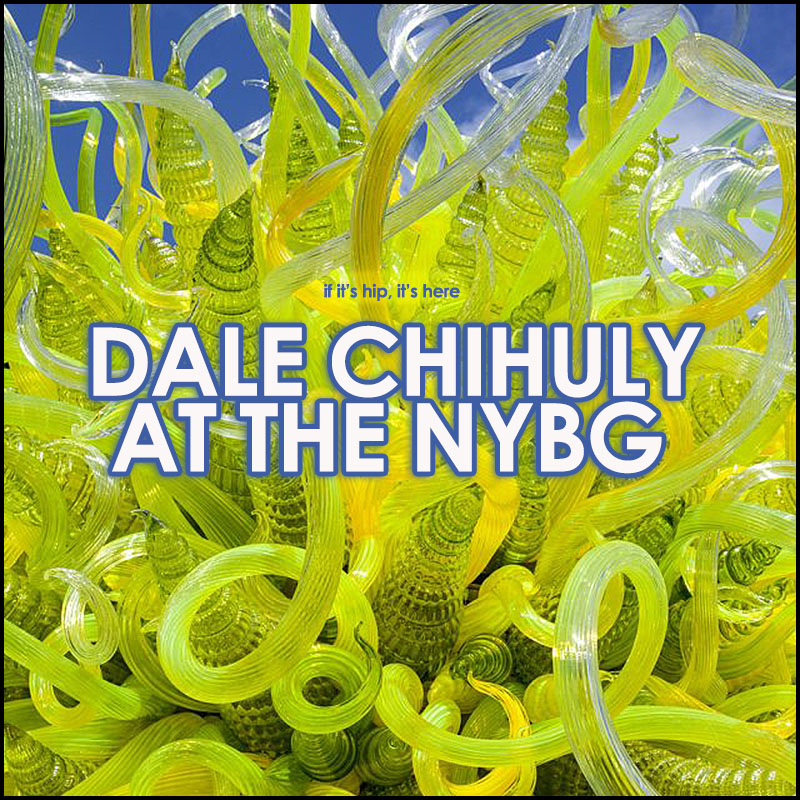 Dale Chihuly at the New York Botanical Gardens