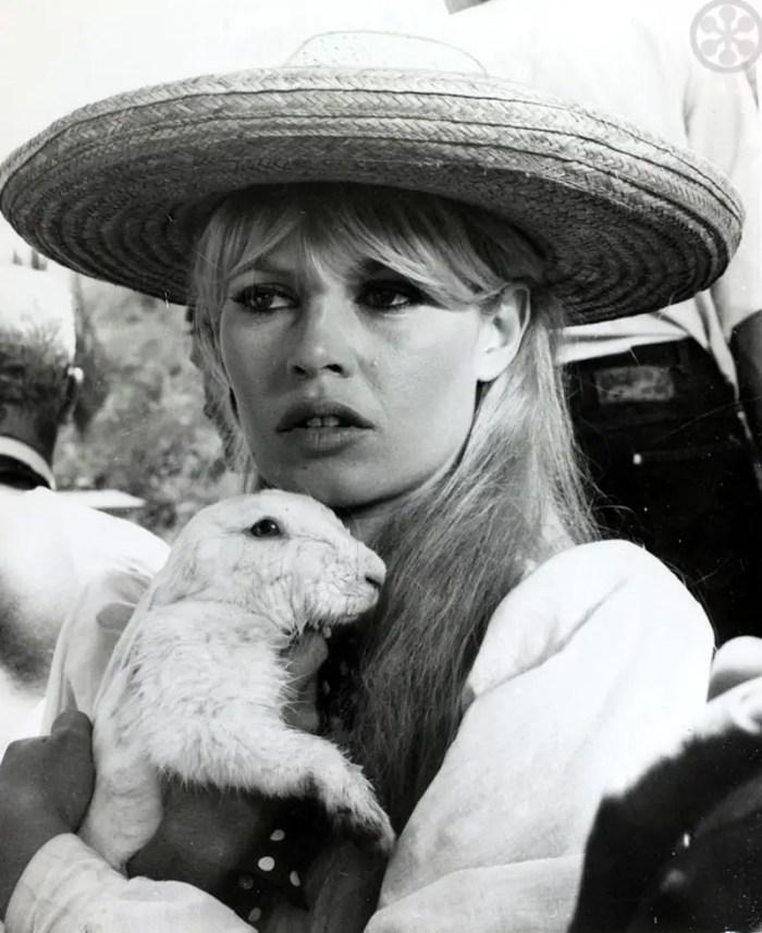 Brigitte Bardot with her own pet rabbit