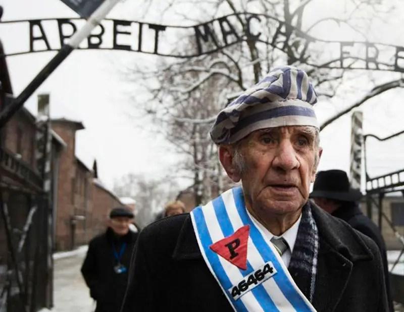 portraits of holocaust survivors the edut project � if