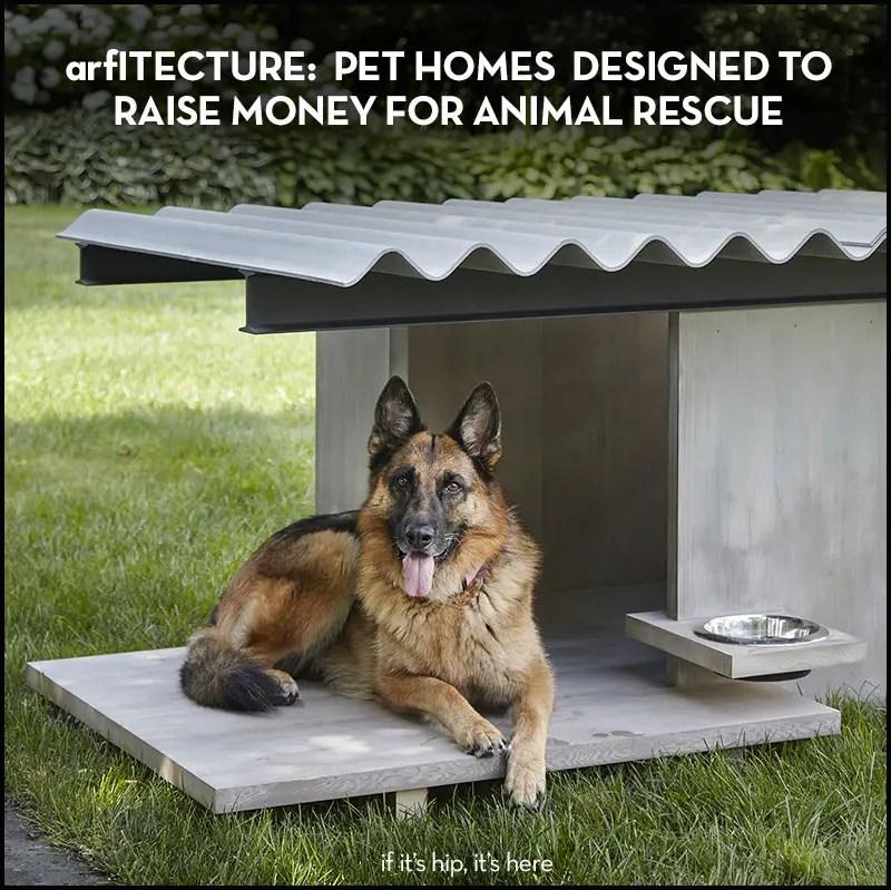 arfitecture pet homes designed to raise money