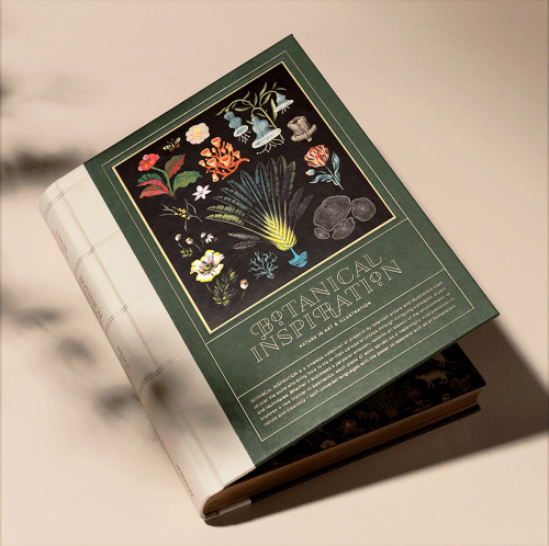 Read more about the article Nature Illustrated In A Stunning New Book: Botanical Inspiration
