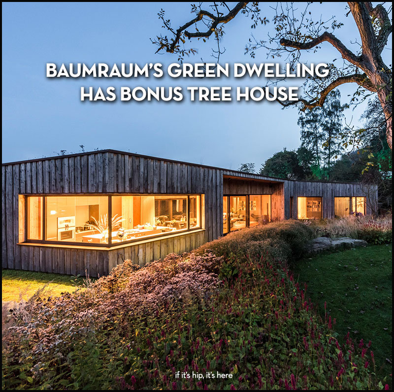 baumraum green dwelling and tree house
