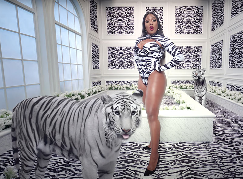 Cardi B And Megan Thee Stallion Wap Music Video Is A Cinematic Feast If It S Hip It S Here