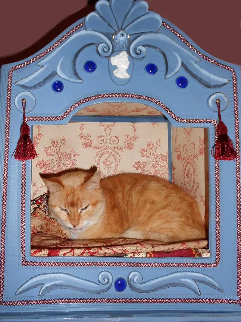 fancy cardboard cat beds