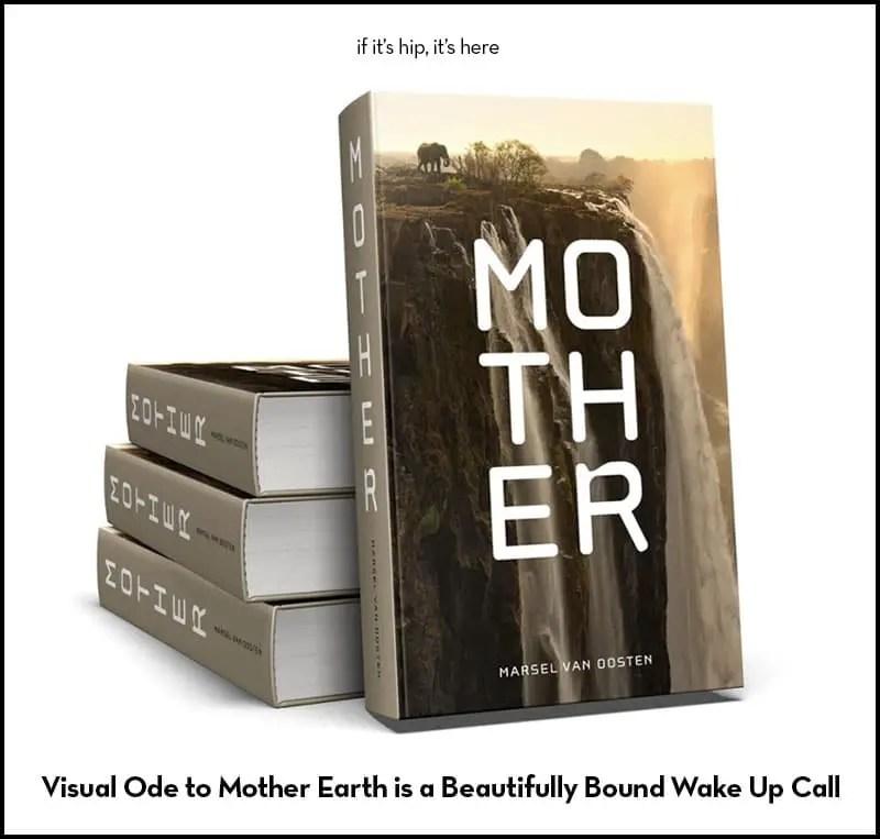 mother by marsel van oosten