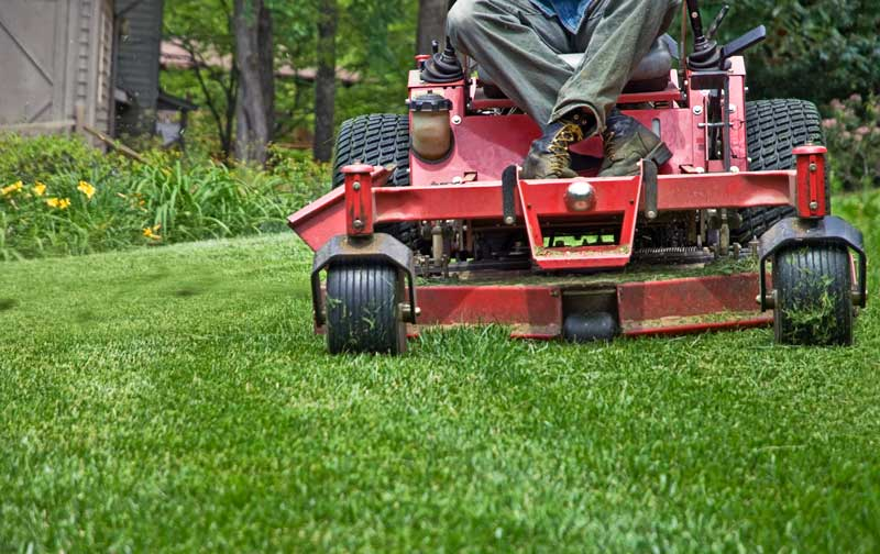 lawn service columbia